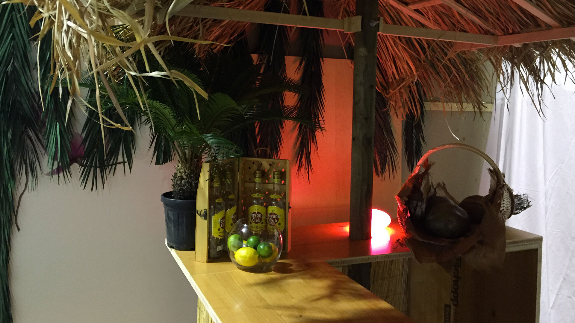 Palmen-strandbar